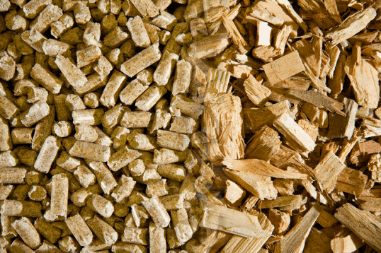 Wood is a biomass fuel